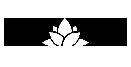 Fitch Media Ventures